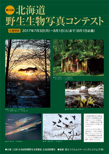 フォト北海道(道新写真データベース)